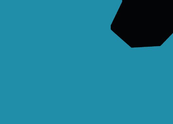 NK Active